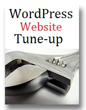 Website design rates and tuneup